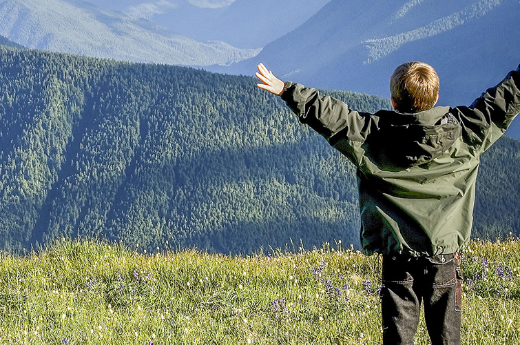 Back of young boy with his arms in the air facing green hills